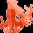 Кальмары и осьминоги